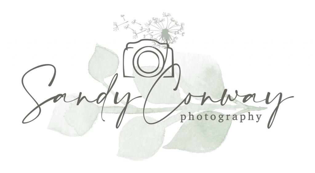 PierLightMedia-Milwaukee-WI_SandyConwayLogo-2020